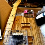 Custom build guitars from project parts or kits