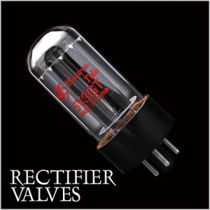 Rectifier amplifier valves