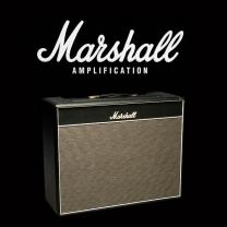 Marshall 1962 Bluesbreaker valve kit