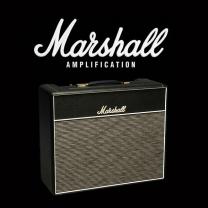 Marshall 1974X valve kit