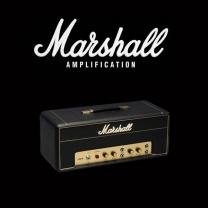Marshall 2061X valve kit