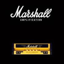 Marshall EL34 100 100 valve kit
