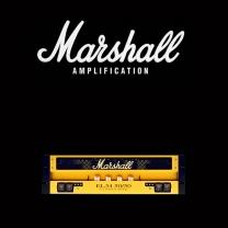 Marshall EL34 50 50 valve kit