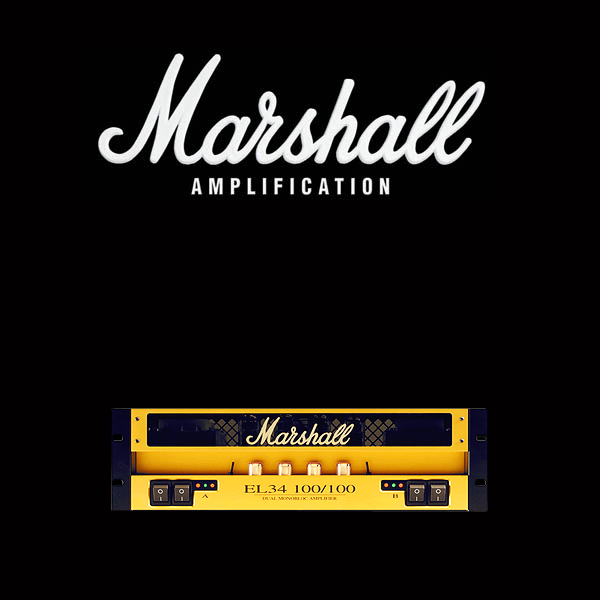Marshall EL34 100 100 valve kit