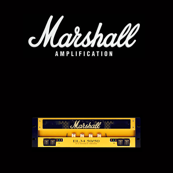 Marshall EL34 50 50 valve kit
