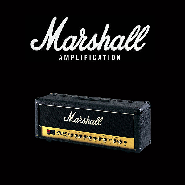 Marshall JCM2000 DSL100 valve kit