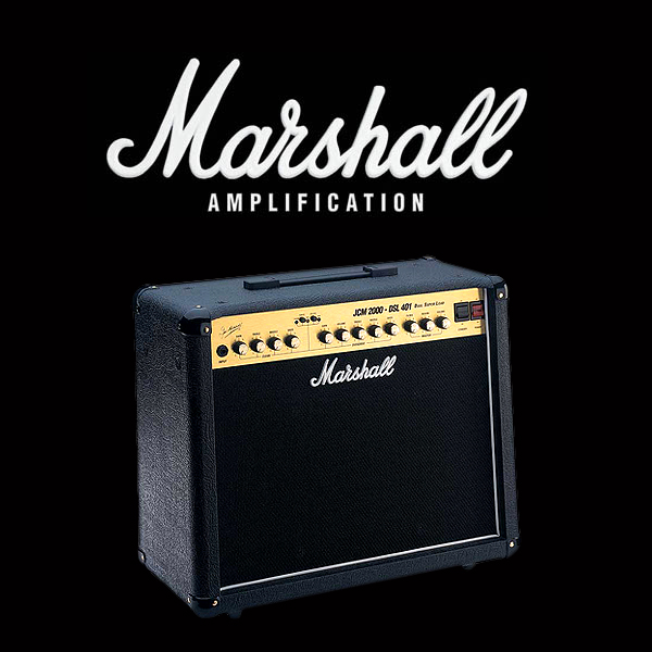 Marshall JCM2000 DSL401 valve kit