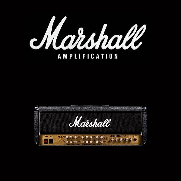 Marshall JCM2000 TSL100 valve kit
