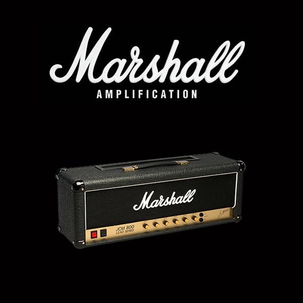 Marshall JCM800 2204 valve kit