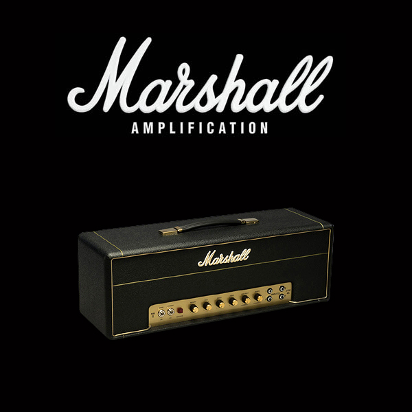 Marshall JTM45 valve kit